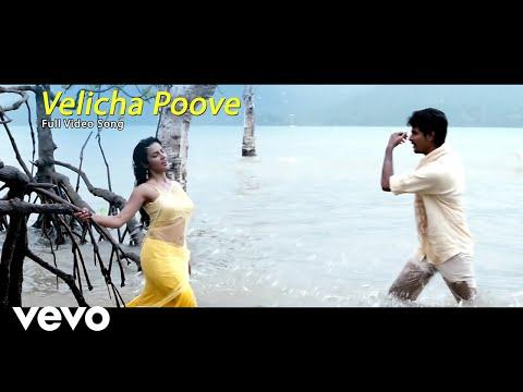 Ethir Neechal - Velicha Poove Video | Sivakarthikeyan, Priya
