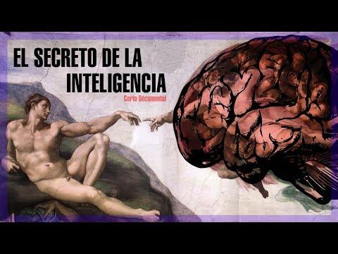 El secreto de la inteligencia - Corto Documental