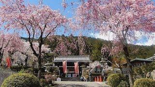 チョット変わった寺の名ですが、応徳年間に白河法皇が谷汲山華厳寺を参...