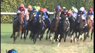 Vidéo de la course PMU JAPAN CUP