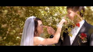 Свадьба Анна и Сергей
