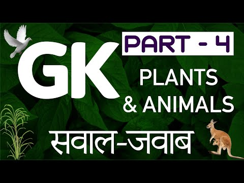 Basic GK questions Part 4   Plants \u0026 Animals   सवाल जवाब   पौधे और पशु   Basic Quiz