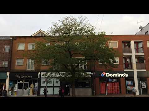 Black Locust - Tree Along Sidwell Street - November 2017