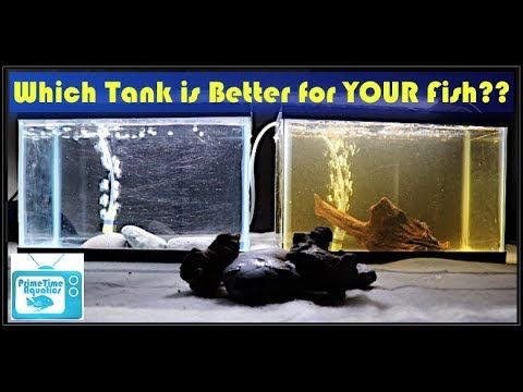 Water Quality In Your Aquarium - What Does It REALLY Mean?