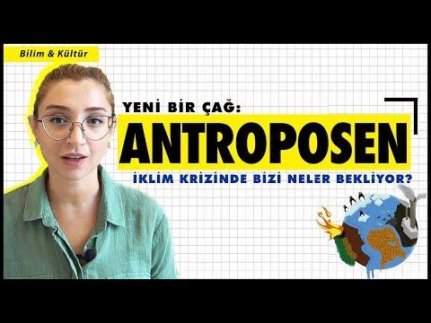 Sonun Başlangıcındayız: Antroposen, İklim Krizi Ve Sanatın Rolü