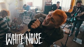 The White Noise - Picture Day (Official Music Video)