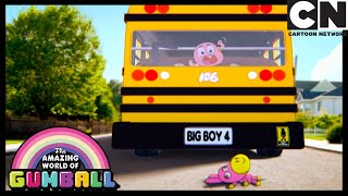 Daisy Gets Lost | The Quest | Gumball | Cartoon Network
