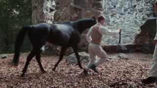 Kinetic Cinema David Fishel Trailer