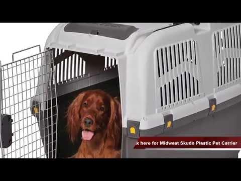 Midwest Skudo Plastic Pet Carrier Review