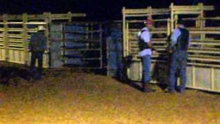 Bullriding practice in Arizona. $20.00 a ride.