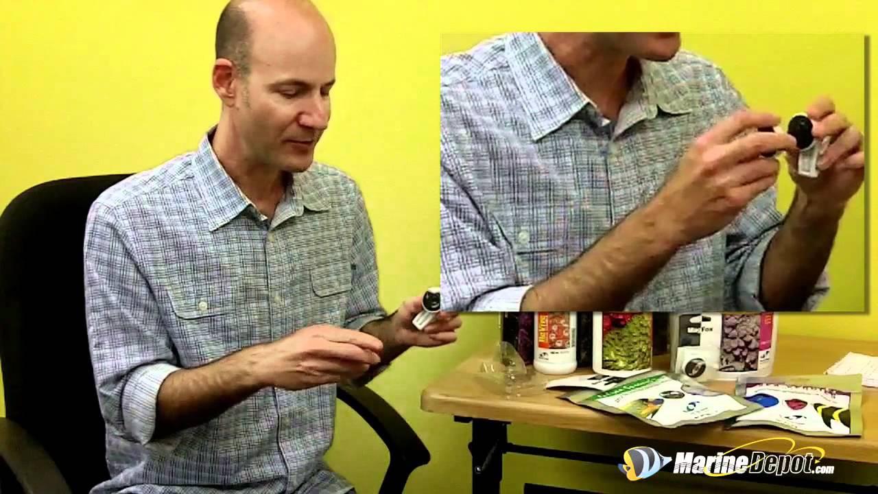 Julian Spung Q&A: Veggie Mag Clip Thumbnail