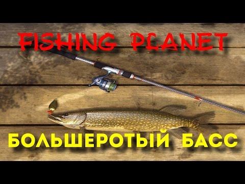 fishing planet ловля басса