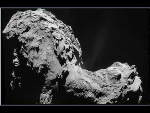 Rosetta beast