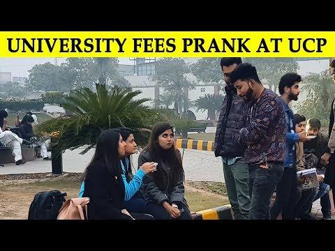 Begging for University Fees Prank in UCP - Lahori PrankStar