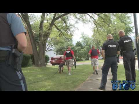 Gang unit takes one person into custody in Fort Wayne, Indiana