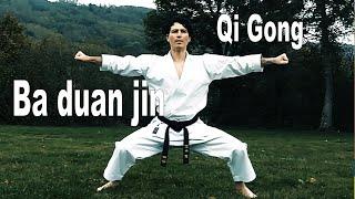 Qi Gong Ba Duan Jin (8 Brocade Qi Gong) - DOJO NAIDOKAN
