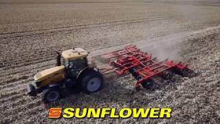 The Sunflower® 1436 Designed with Agronomics in Mind
