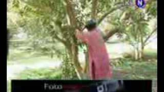BACHAYO sindhi funny best video .mp4