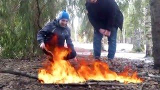 Лес не поджигал-по щам не получал