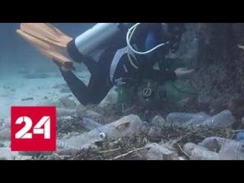 В Мировом океане разрастаются мертвые зоны - Россия 24