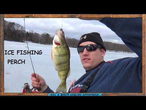 Ice fishing chautauqua perch 2016 youtube for Ice fishing videos on youtube
