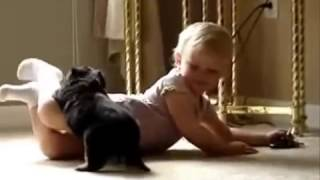 Cute Rottweiler Puppy Playing With Baby