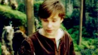 Peter Pevensie/Eowyn {You Gotta Get Up And Try}