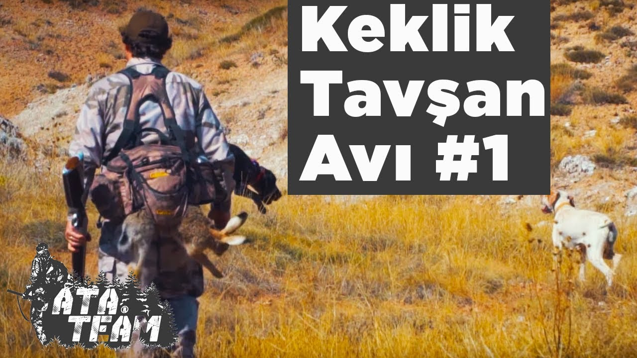 Keklik Tavşan Avı Ata Team 1. Bölüm Yaban Tv Partridge Hunting