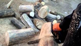 Цепная электропила Кентавр СП 224 в работе(Пила новая,перепилил ею прицеп дров.Дерево-сухой ясен. В целом пилой доволен.Немного пришлось доработать..., 2015-11-09T13:40:12.000Z)