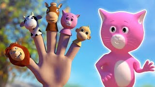Video Động vật ngón tay gia đình | vần ngón tay | Learn Animals | Finger Family | Animal Finger Family download MP3, 3GP, MP4, WEBM, AVI, FLV Juli 2018