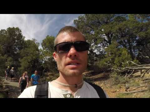 Family Trip to Mesa Verde National Park