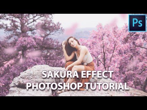 How To Create Sakura Colour Effect | Photoshop Tutorial
