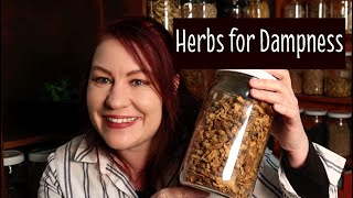 Herbs for Dampness -What Chinese herbs can be used for damp problems?