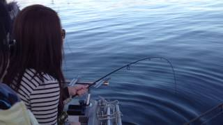 Snapper fun with Unreel fishing charters