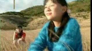 Timi Zhuo 卓依婷 - 小草 Xiao Cao