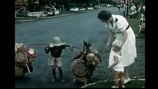 Video Wajah Pribumi - #iwanfals download MP3, 3GP, MP4, WEBM, AVI, FLV Oktober 2017