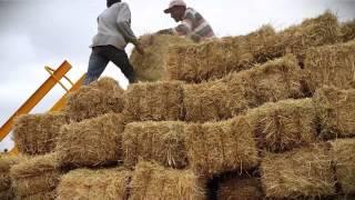 Yılmaz oğlu tarım makinaları