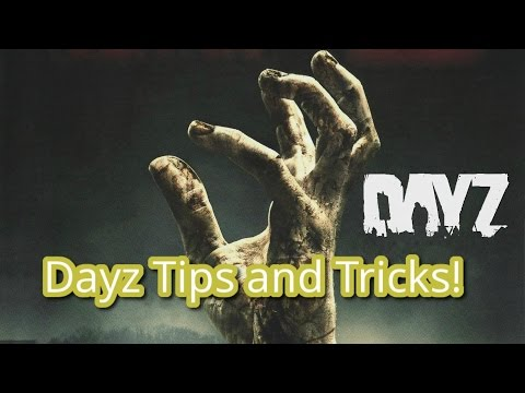 How to Get Started on DayZ