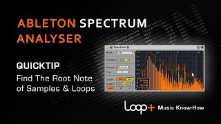 Find the Root Key of any Loop Sample or One Shot - Loop+ Quick Tip