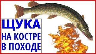 Готовим рыбу на костре. Как готовить рыбу на костре в походе