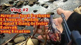 Vlog Primitive Survival #2 Mencari Spot Berburu Di Sungai Malah Dapat Udang Lobster Kena Racun