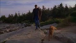 "Jesse Stone:  ""Loyal Friend"""