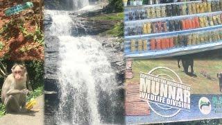 Kerala Trip || Day 2 || Kochi to Munnar (Highlight - Munnar Spice Garden)