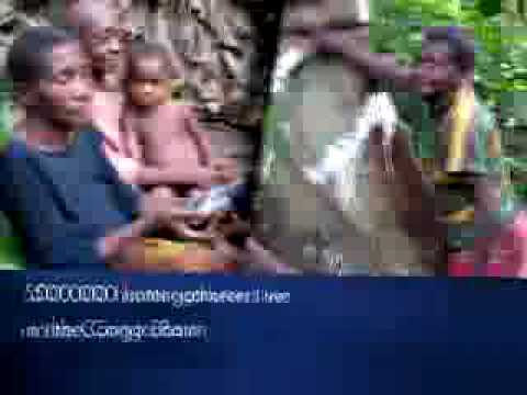 Tropical Forest Trust's Indigenous Voices Project