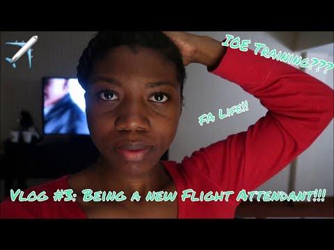 Vlog #3: New Job??? IOE Training??? FA Life???