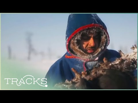 Surviving The Cold With Siberian Nomads | Beyond Human Boundaries | TRACKS