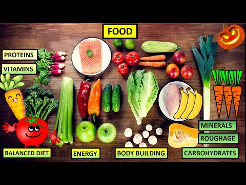 CBSE: Science: Class 4-5: Food (Proteins, carbohydrates, fats, vitamins, nutrients, roughage, diet)