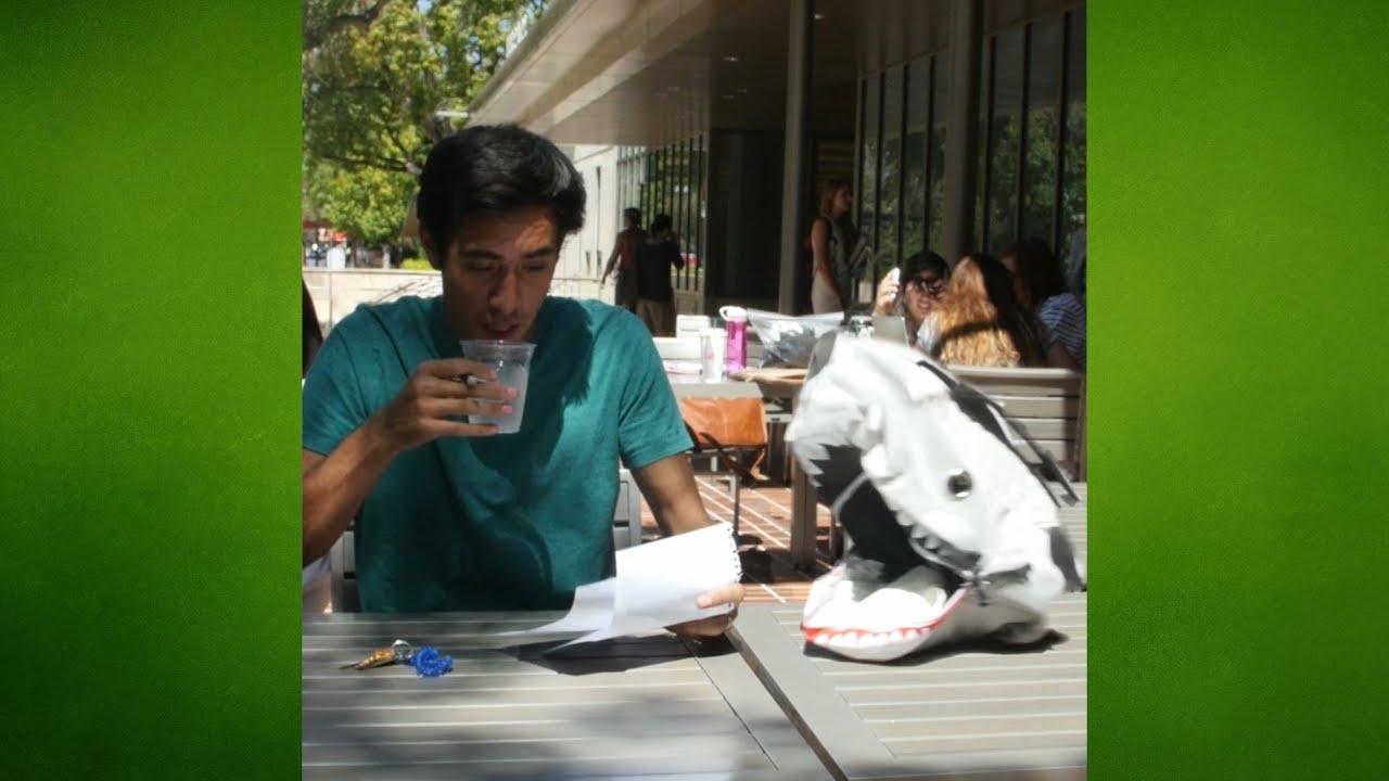 newspaper style essay lifestyles