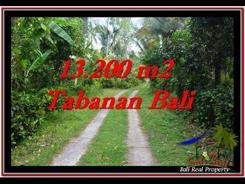 Land for sale in Tabanan Bali  Ocean View TJTB255