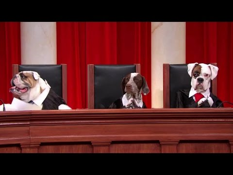Obergefell V. Hodges: Oral Argument - April 28, 2015 (Part 1)